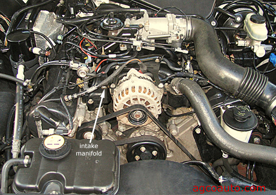 Intake area of the 4.6L Ford engine with the engine cover removed