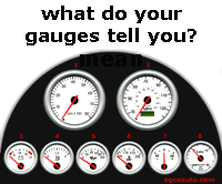 What do your dash gauges mean?